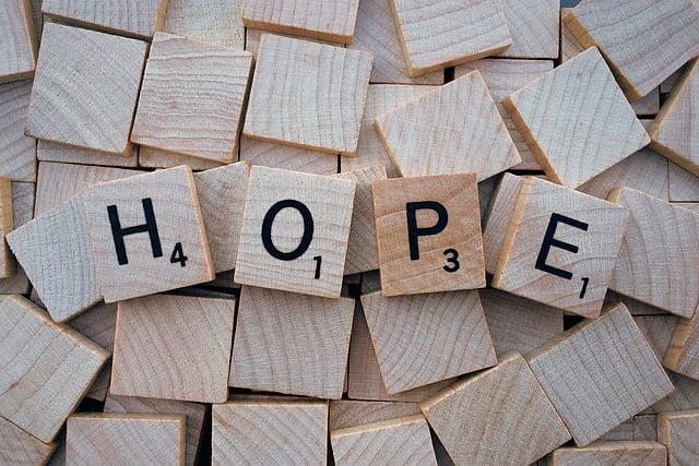 Come promuovere la speranza nella Terapia a Seduta Singola?  Parte seconda: Casi clinici.